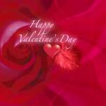 Valentine's Day-17
